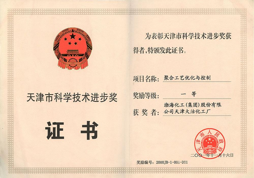 2001年天津市科学技术进步奖一等奖(聚合工艺优化与控制)
