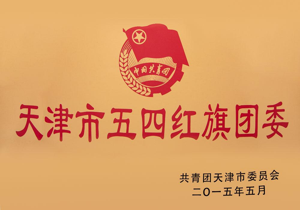 2015年天津市五四红旗团委